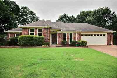 Collierville Single Family Home Contingent: 742 Bradley