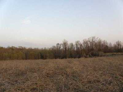 Hernando Residential Lots & Land For Sale: Barbee