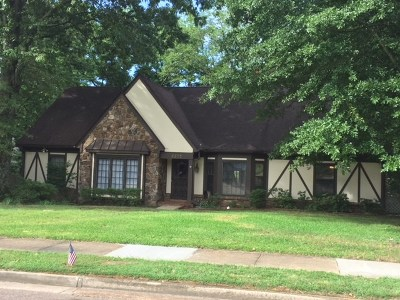 Germantown Single Family Home For Sale: 8373 Poplar Pike