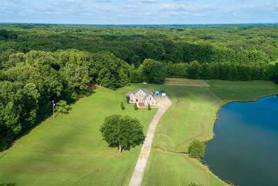 Bartlett Single Family Home For Sale: 9118 Memphis-Arlington
