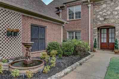 Olive Branch Single Family Home For Sale: 6458 Cody