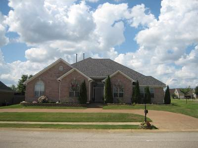 Olive Branch Single Family Home For Sale: 12918 Myrtle Bend