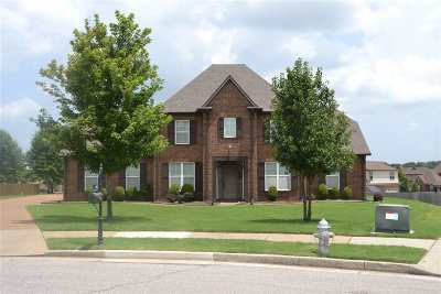 Collierville Single Family Home For Sale: 243 Spacious Sky