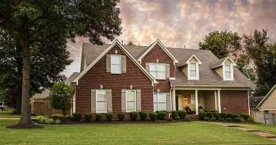 Collierville Single Family Home For Sale: 810 Lark Hill