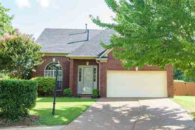 Collierville Single Family Home Contingent: 10505 S Ashglen