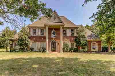 Collierville Single Family Home For Sale: 9464 Mayfield