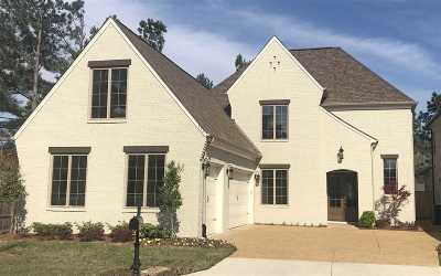 Collierville Single Family Home For Sale: 194 Chadwick Woods
