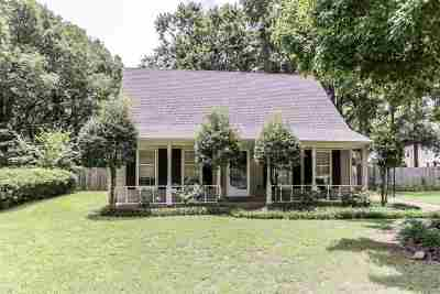 Collierville Single Family Home For Sale: 237 E Lawnwood