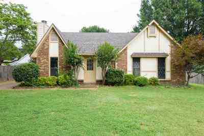 Bartlett Single Family Home For Sale: 3178 Elmore Park