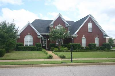 Olive Branch Single Family Home For Sale: 6348 Aboreal