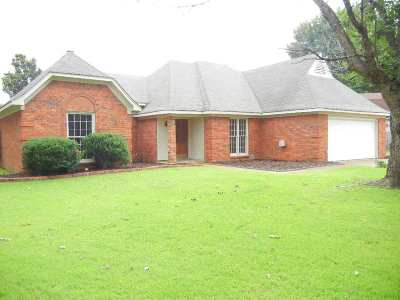 Bartlett Single Family Home For Sale: 6524 Maple Hill Farms