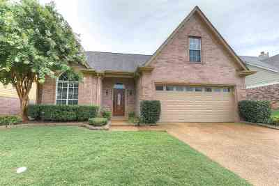 Homes For Sale In Arlington Tn