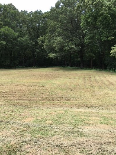 Rossville Residential Lots & Land For Sale: 715 Casey
