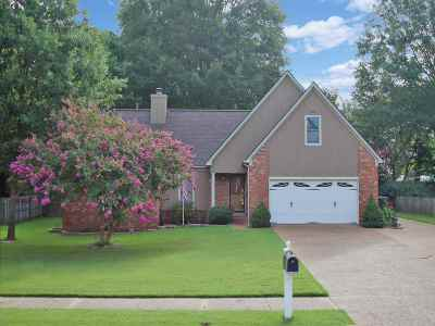 Collierville Single Family Home Contingent: 932 Moorefield