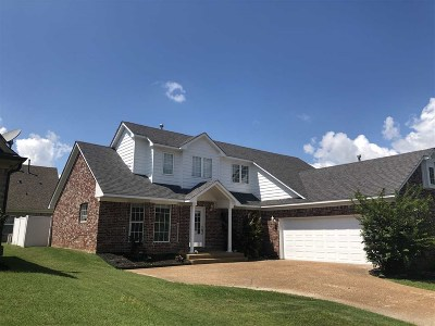 Bartlett Single Family Home For Sale: 8914 Village Lake