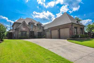 Collierville Single Family Home For Sale: 591 Ogilie