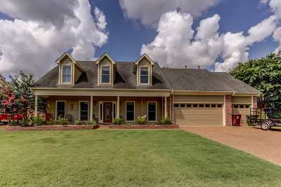 Collierville Single Family Home For Sale: 481 Canal Loop Turn