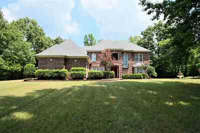 Unincorporated TN Single Family Home For Sale: $575,000