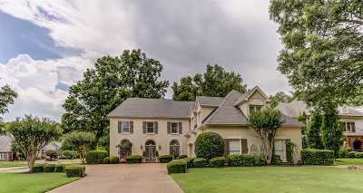 Collierville Single Family Home For Sale: 3495 Manor Grove