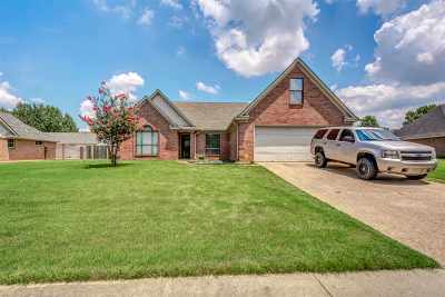 Bartlett Single Family Home For Sale: 4042 Meadow Field