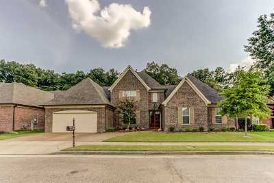 Collierville Single Family Home For Sale: 257 Lake Hollow