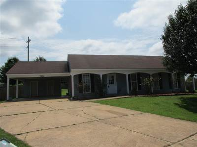 Olive Branch Single Family Home Contingent: 10484 Courtney