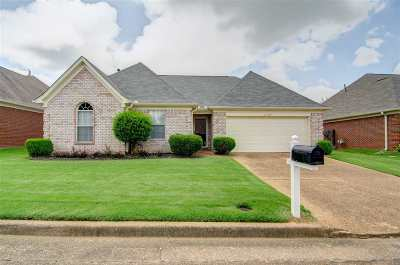 Memphis Single Family Home For Sale: 8123 Country Mill