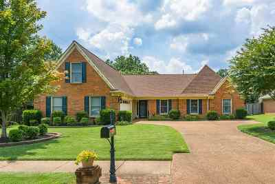 Memphis Single Family Home For Sale: 405 Mysen