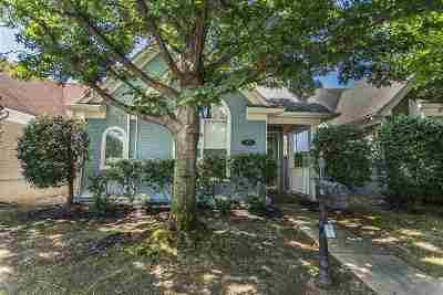Memphis Single Family Home For Sale: 263 Island Village