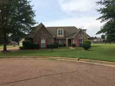 Collierville Single Family Home For Sale: 9414 Barkley Dale