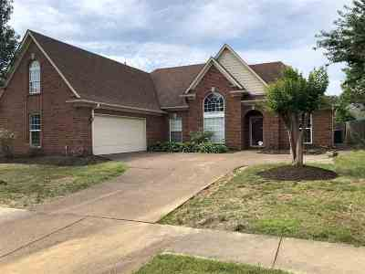 Shelby County Single Family Home For Sale: 9223 Speerberry