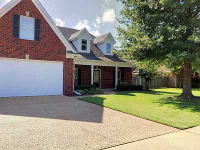 Bartlett Single Family Home For Sale: 4533 Tall Meadow
