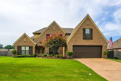 Bartlett Single Family Home For Sale: 7574 Romero