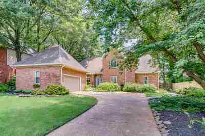 Memphis Single Family Home For Sale: 238 Walnut Trace