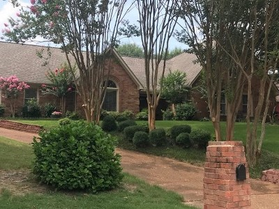 Cordova TN Single Family Home For Sale: $255,000
