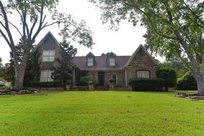 Collierville Single Family Home For Sale: 3051 Country Place
