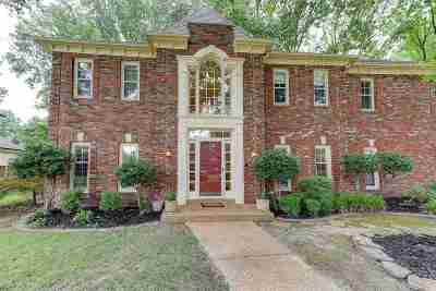 Germantown Single Family Home For Sale: 2094 North Bridge