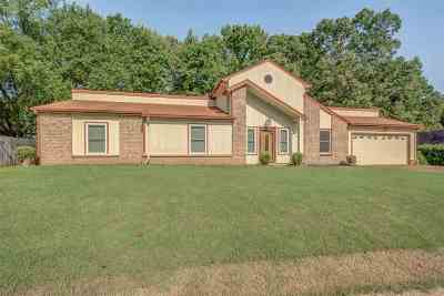 Lakeland Single Family Home For Sale: 2971 Bramblebush