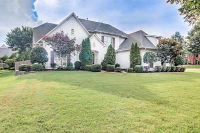 Collierville Single Family Home For Sale: 1331 Tuscumbia
