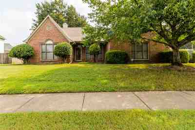 Memphis TN Single Family Home For Sale: $197,000