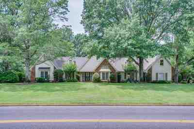 Memphis Single Family Home For Sale: 483 N Walnut Bend