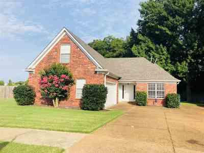 Arlington Single Family Home For Sale: 11692 Wilder