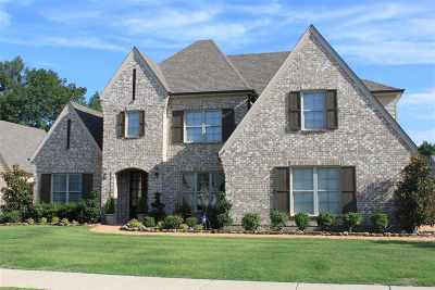 Collierville Single Family Home For Sale: 568 Catamount