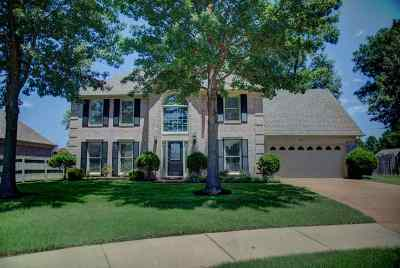 Collierville Single Family Home For Sale: 428 Glenogle