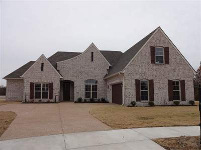 Arlington Single Family Home For Sale: 6387 Creekside Lake