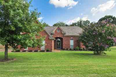 Southaven Single Family Home For Sale: 2419 Greencliff