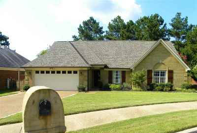 Collierville Single Family Home Contingent: 238 Wolf Ridge