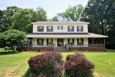 Unincorporated TN Single Family Home For Sale: $375,000