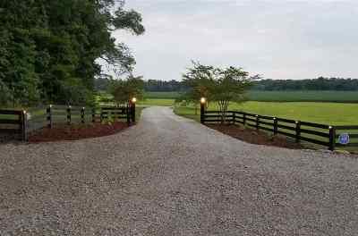 Selmer Single Family Home For Sale: 1800 Woodville
