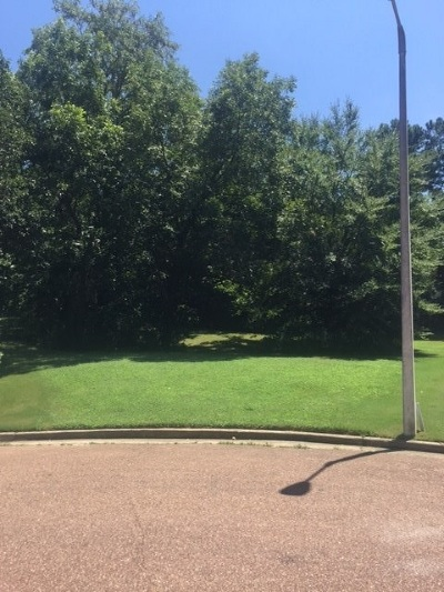 Collierville Residential Lots & Land For Sale: 380 Hound Hill